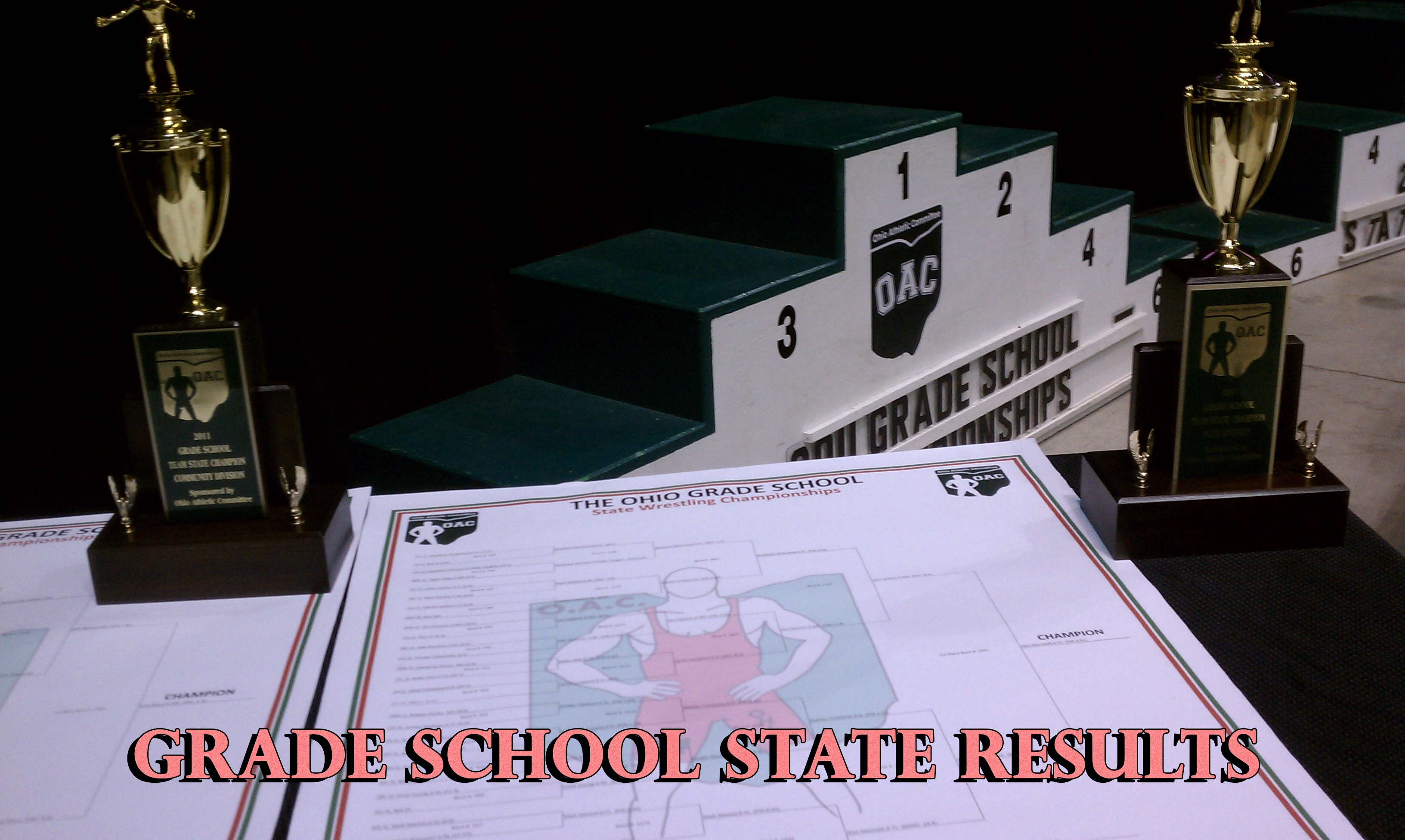 Grade School Wrestling Results